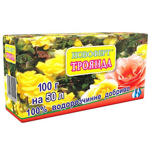 100_roza